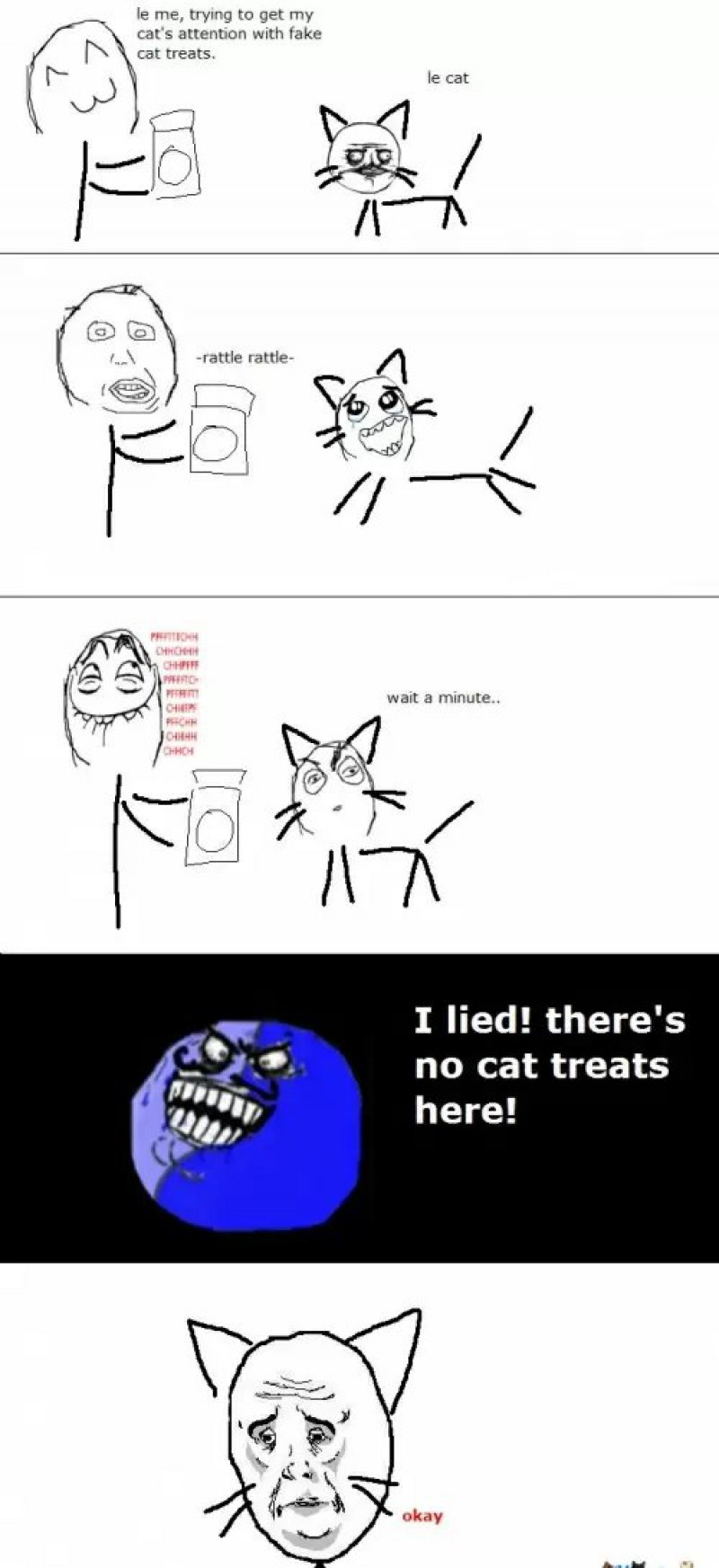 When Cat Gets Trolled! -12 Funny Okay Memes That Will Make You Feel Okay About Your Life