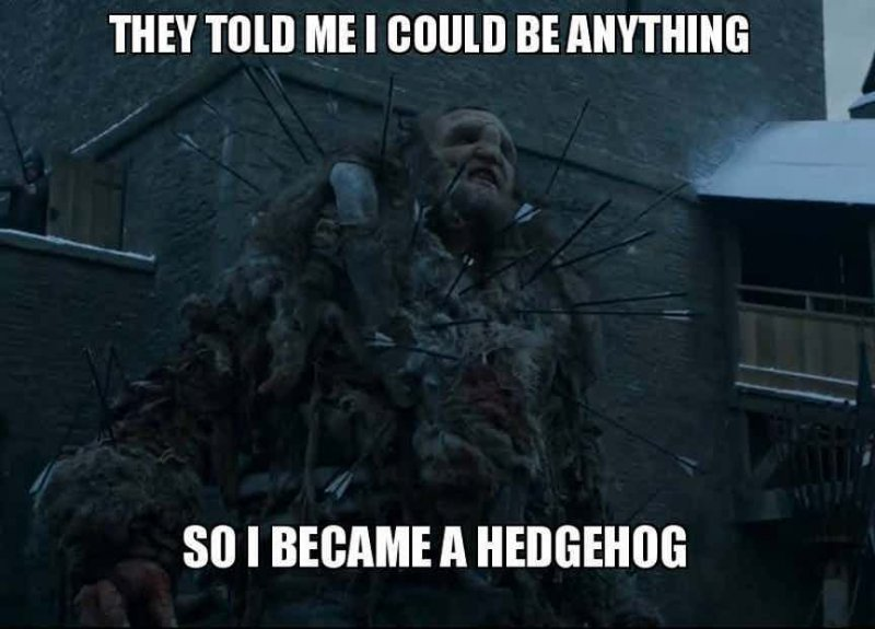 Wun Weg Wun Dar Wun!-12 Funny Game Of Thrones Memes That Are On Point
