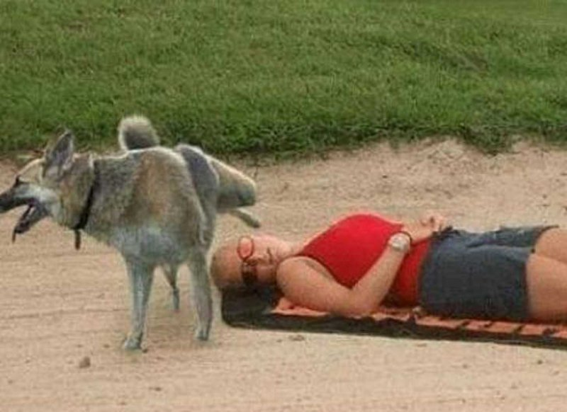 This Funny Dog-15 Most Embarrassing Photos Ever Taken At Beach