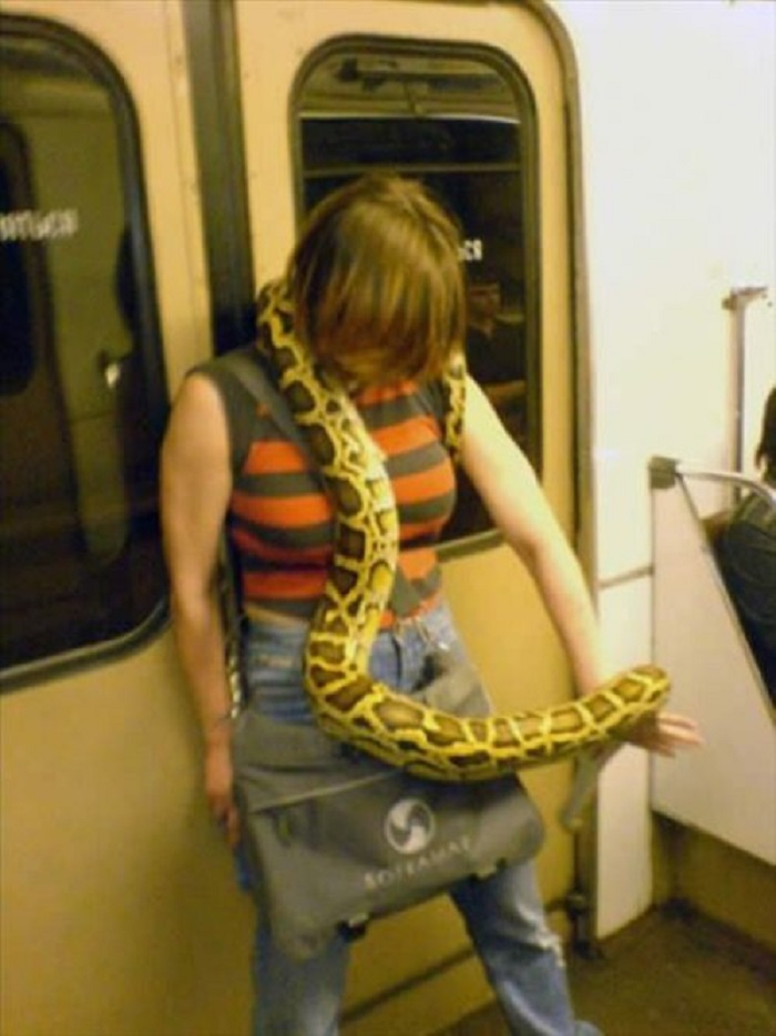Best Way to Keep Molesters on Public Transport at Bay-15 Most Awkward Public Transport Pictures