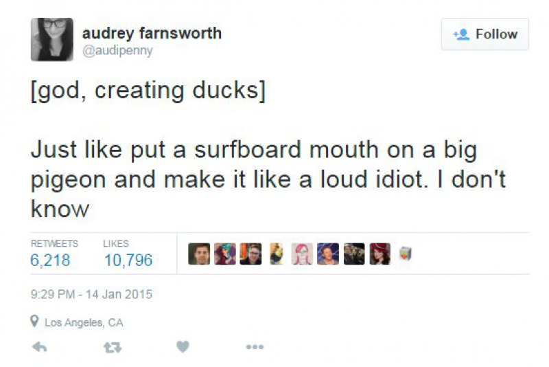 When God Made Ducks-15 Tweets About God That Will Make You Laugh