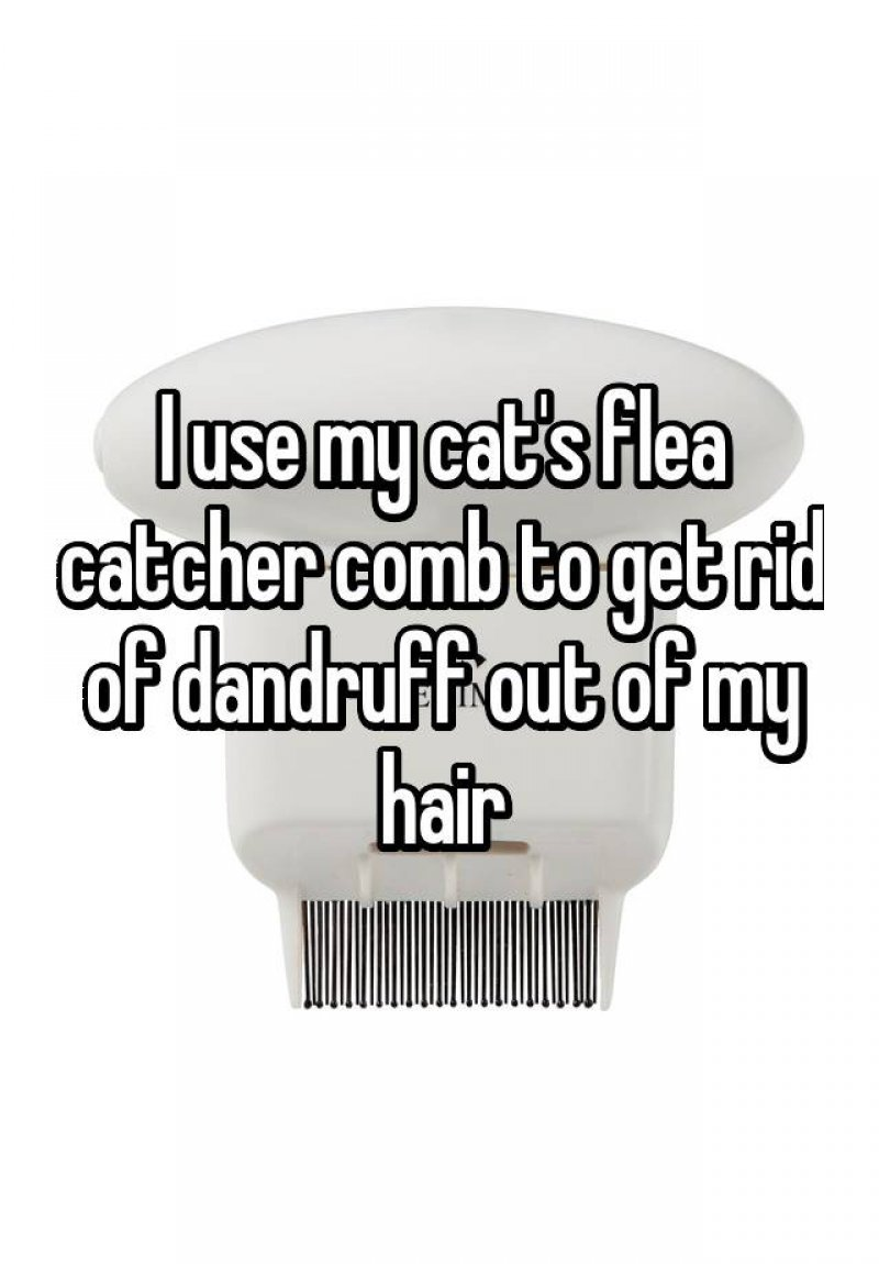 Use Pet's Flea Catcher Comb to Get Rid of Dandruff-15 Ridiculous Life Hacks For All The Lazy People Out There