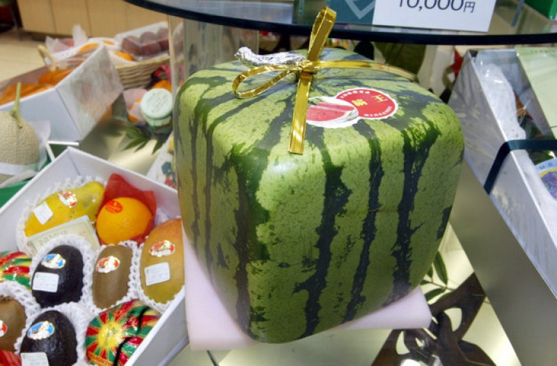 Japanese Square Watermelons-15 Weird Things That Can Happen Only In Japan