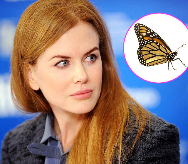 Nicole Kidman – Fear of Butterflies-15 Celebrities With Weird Phobias