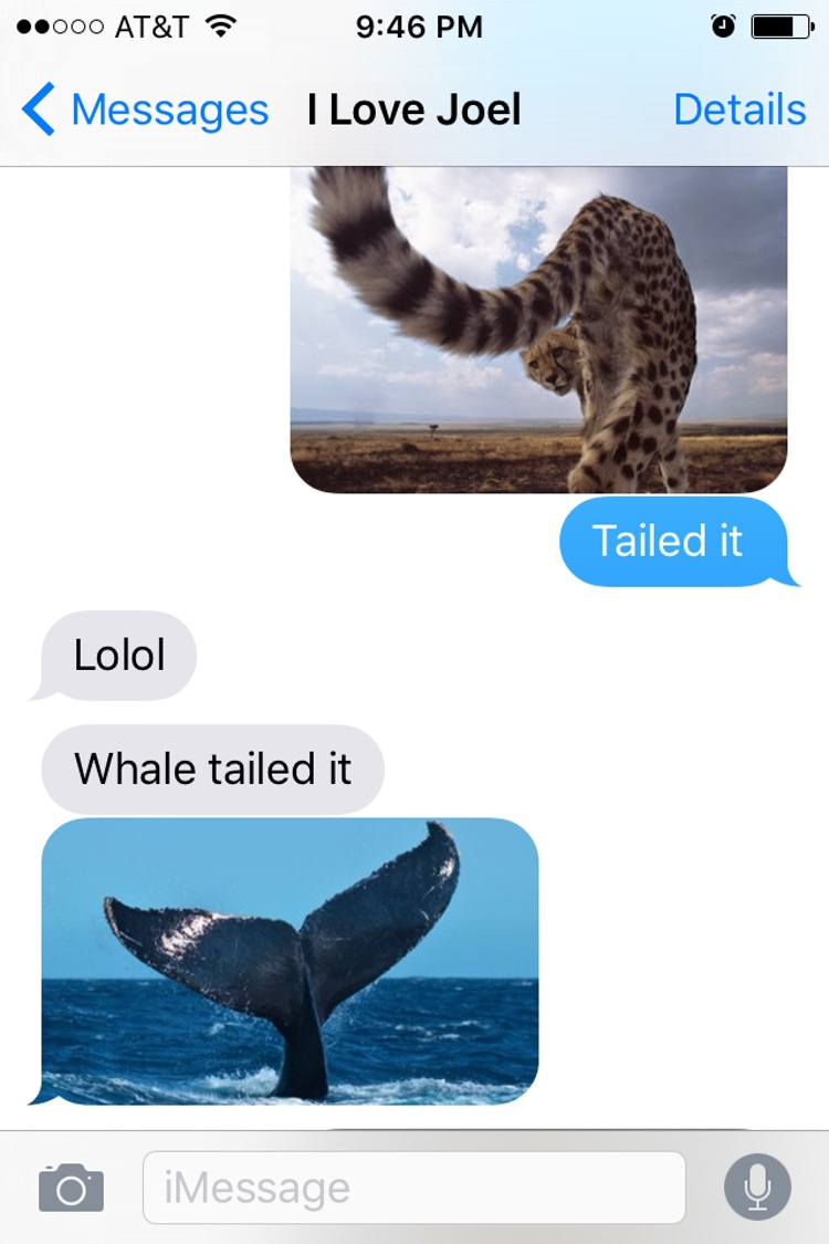 Tailed it-15 Hilarious Images Of A Couple's Pun Texting