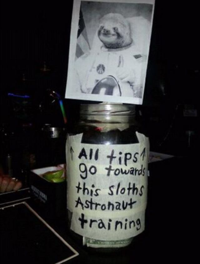 Tip and Help the Astronaut Sloth to visit Space-15 Funniest Tip Jars You'll Ever See