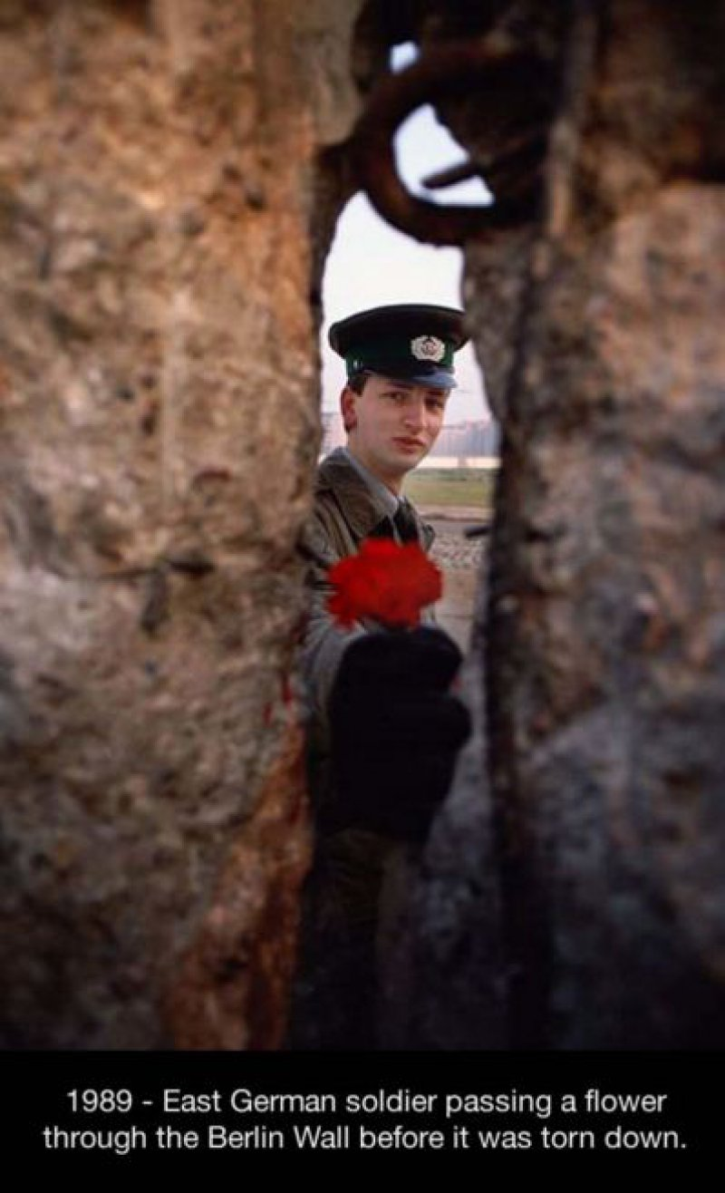 This Powerful Picture of a Soldier Passing a Flower through the Berlin Wall-15 Historical Pictures That Are Really Shocking