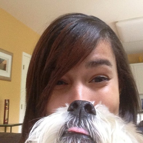 Smiles All The Way!!-15 Epic Dog Beards That Will Make You Want To Have One