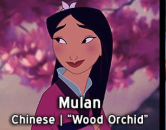 Mulan-15 Disney Princesses Names And Their Meanings In Different Languages