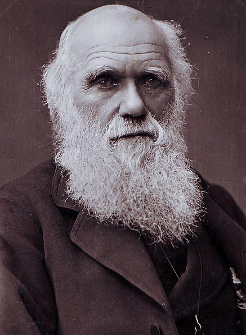 Charles Darwin-15 Famous Personalities Who Married Their Family Members
