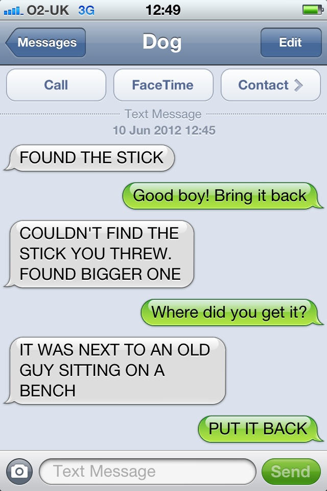 A Stick is a Stick after All-15 Hilarious Dog Texts
