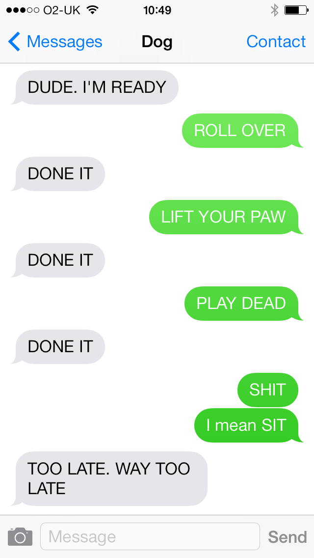Reason Why You Need to be a Little Careful with an Overly Obedient Dog-15 Hilarious Dog Texts