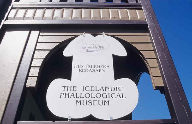 Welcome to The Icelandic Phallological Museum-15 Bizarre Facts About Phallological Museum That Will Leave You Stunned