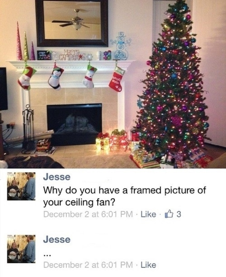 Framed Picture of Ceiling Fan-15 People Who Have No Idea How Things Work