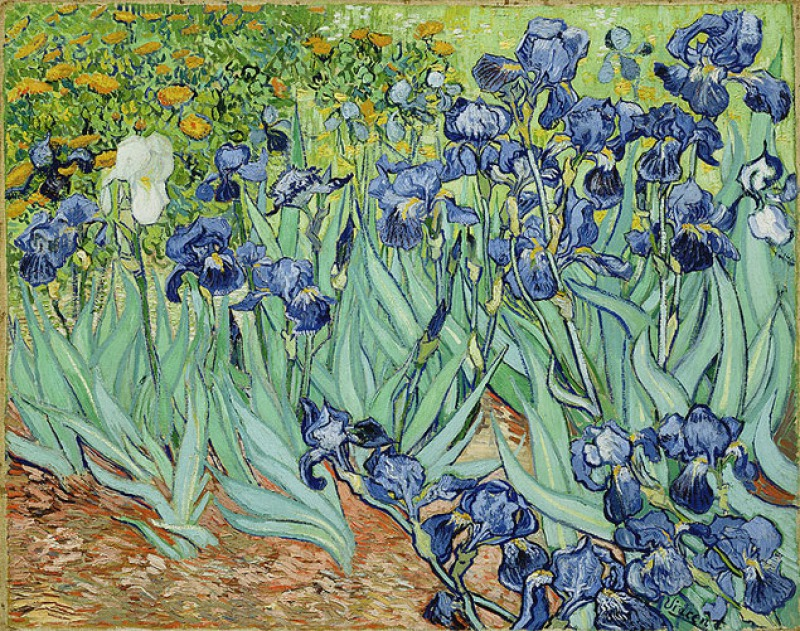 Irises, 1889, by Vincent Van Gogh (1 Million)-15 Ridiculous Paintings Sold For Millions Of Dollars