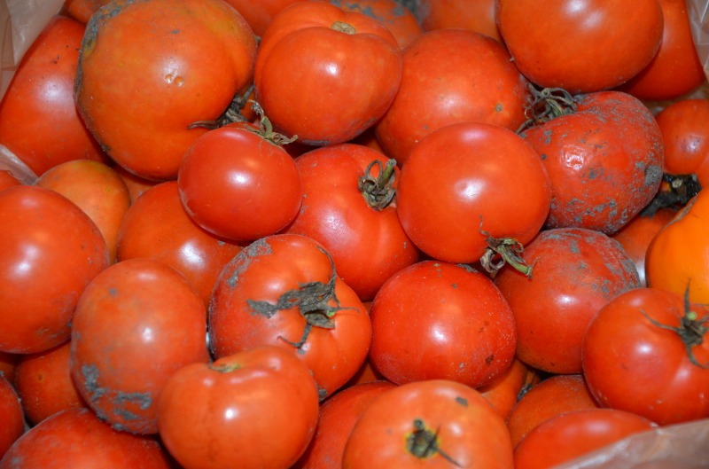 Marco's Pizza and the Case of Unwashed Tomatoes-15 Chain Restaurant Secrets That Will Make You Never Visit One