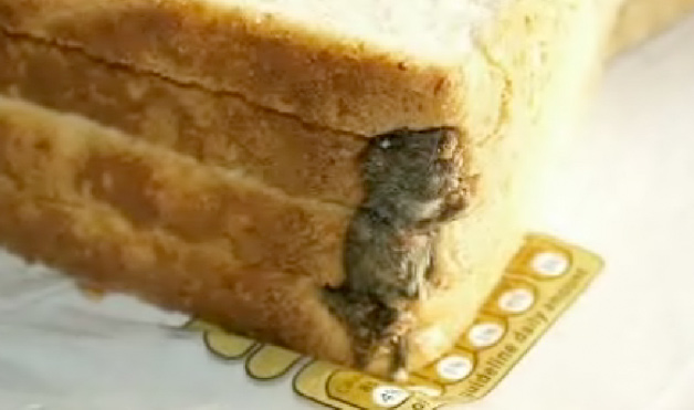 dead Mouse in bread loaf.-15 Most Disgusting Things People Ever Found In Their Food
