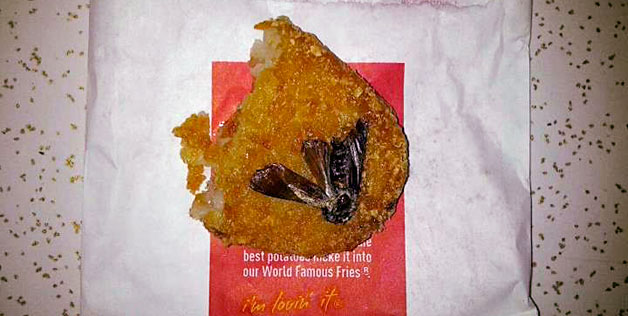 Cockroach in the Hash Browns.-15 Most Disgusting Things People Ever Found In Their Food
