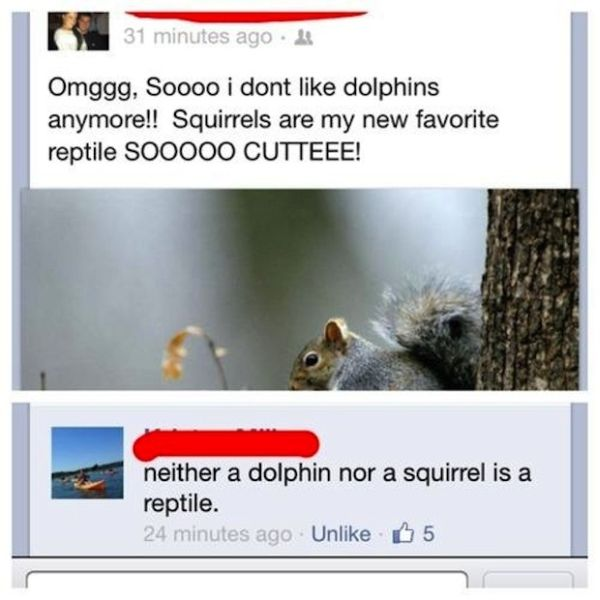 Squirrel a reptile? lol-15 People Who Shouldn't Be On Facebook